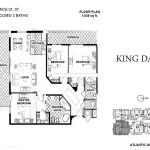 king-david-plan (1)