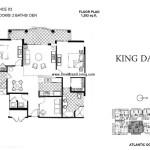 king-david-plan (3)